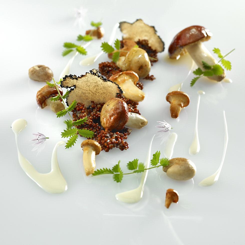 Haute cuisine haute today for Haute cuisine