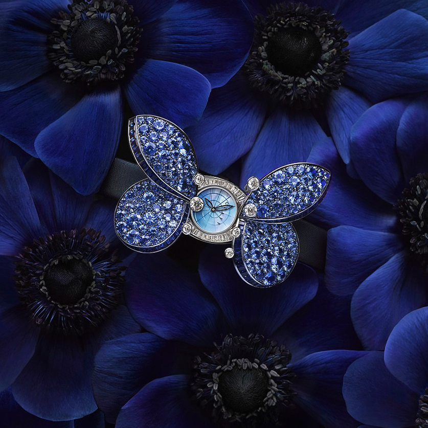 Haute-Today-Graff-Princess-Butterfly-Watch-Sapphire